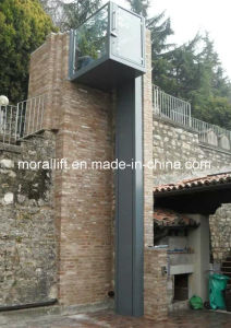Villa Apartment Wheelchair Lift for Disabled People pictures & photos
