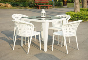 Outdoor Garden White Rattan Dining Table and Chairs (DS-06012W) pictures & photos