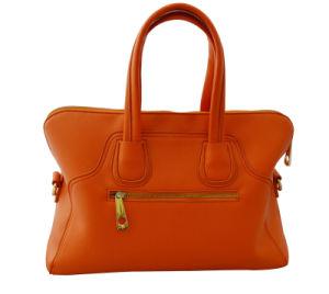 Hot Sell Ladies Tote Handbags (320B)