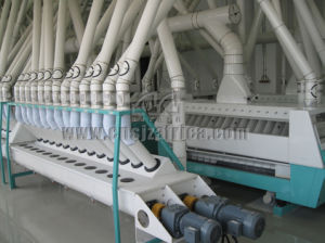 40-2400t/24h Flour Milling Machine pictures & photos