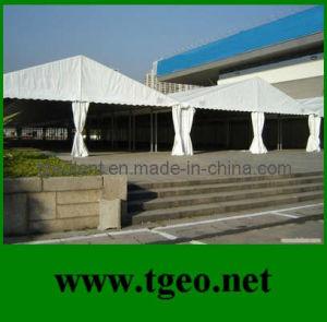 Wall Tent (TGEO 2265)