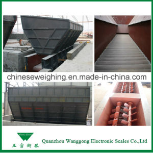 Electronic Automatic Belt Weigh Feeder pictures & photos