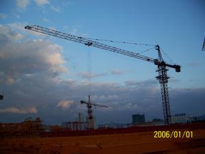 Tower Crane (QTZ80(TC5312/6010/5513))