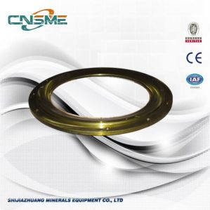 Crusher Professional Parts Slide Ring pictures & photos