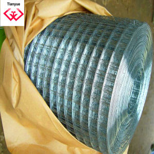 Construction Galvanized and PVC Coated Welded Wire Mesh (TYH-005) pictures & photos