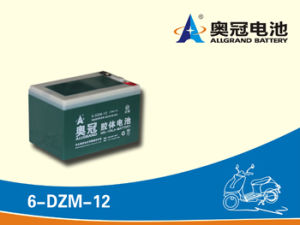 Electric Bike Battery 12V12ah/ Motive Battery/ Lead Acid Battery