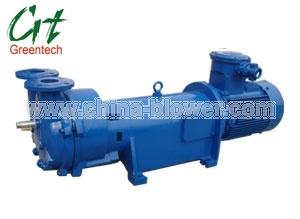 Water Ring Vacuum Pump (2BV6 110) pictures & photos