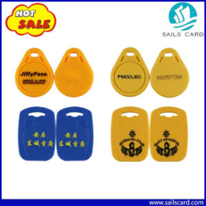 High Quality Portable RFID Mini Keychain for Security and Protection pictures & photos