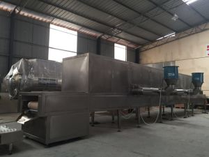 Kwsg Tunnel-Type Microwave Sterilizing Dryer pictures & photos