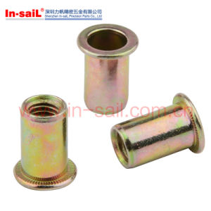Auto Spare Parts Flat Head Knurled Rivet Nut with Hole pictures & photos