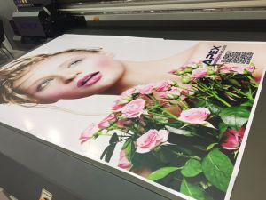 Large Format Digital UV Flatbed Printer From Microtec pictures & photos