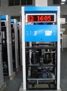 Double Nozzle Fuel Dispenser for Fuel Station (RT-B224) pictures & photos