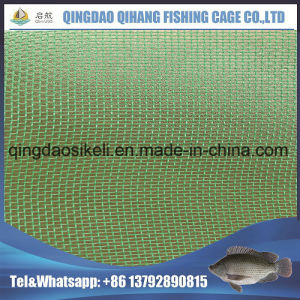 Fingerling Fishing Net, Hapa Fish Farming PE Net pictures & photos
