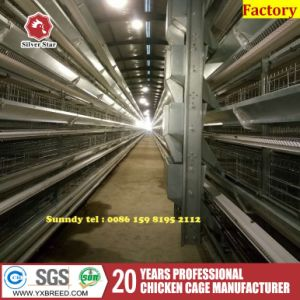 Farm Machinery Automatic Egg Collection Machine Egg Collecter pictures & photos
