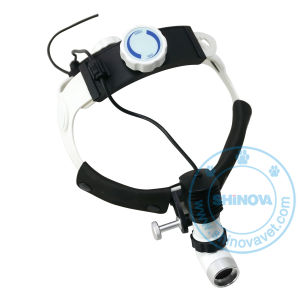 Veterinary High Power Head Light (HL-202A-6) pictures & photos