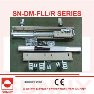 Fermator Landing Door 2 Panels Side Opening (SN-DM-FLL/R) pictures & photos