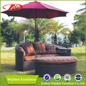 Garden Sun Bed Sun Lounger with Umbrella (DH-8603) pictures & photos