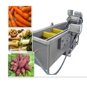 High Quality Industrial Vegetable Fruit Washer Peeler Equipment pictures & photos