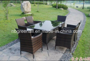 Patio Leisure Outdoor Rattan Garden Furniture Dining Furniture pictures & photos