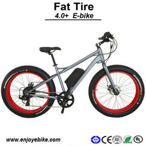 2015 New Design Fat Tire 4.0inch E-Scooter E-Bike E-Bicycle Electric Bike (PE-TDE12Z)