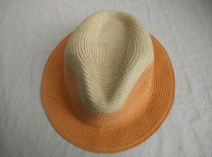 Sewn Braid DIP Dye Fedora Straw Hat