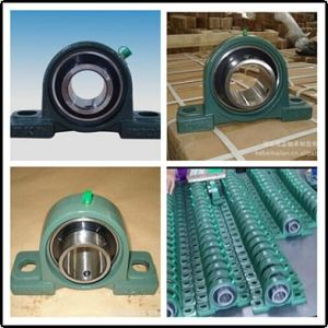 2 Bolt Flanged Bearing/Pillow Block Bearing (UCP200 UCP300 UCPX00) pictures & photos