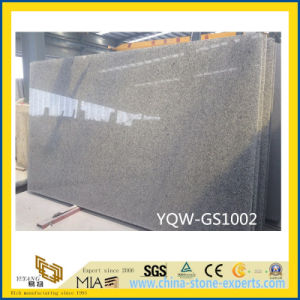 Light Grey G602 Granite Slab for Tiles with New Order pictures & photos