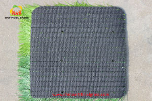 50mm Artificial Soccer Grass Professional Competition pictures & photos