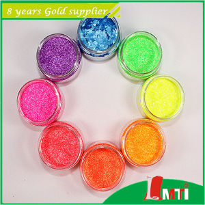 Pet Sparkle Glitter for Leather Now Big Sale pictures & photos