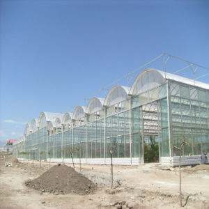 100% Bayer Virgin Material Polycarbonate Hollow Sheet for Greenhouse with High Light Transmission pictures & photos