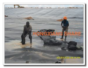 GM 13 and ASTM Standardtextured HDPE Geomembrane pictures & photos