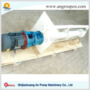 Bp Series Vertical Submersible Sump Slurry Pump pictures & photos