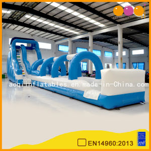2 in 1 Aoqi Design Water Park Slide (AQ1036-3) pictures & photos