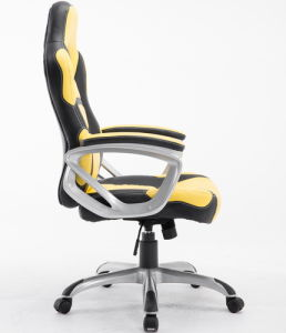 Professional Ergonomic Racing Chair Office Chair pictures & photos