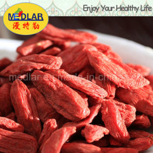 Medlar Lbp Organic Dried Goji Berry Wolfberry pictures & photos