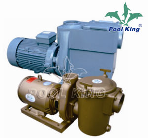 High Performance Residential Pool Pump for Swimming Pool pictures & photos