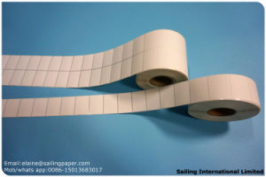 Top Quality Thermal Transfer Label pictures & photos
