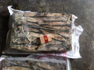 Frozen Whole Round Illex Squid pictures & photos