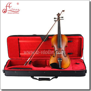 Professional Aileen Wholesale Student Violin with Case (AVL-231) pictures & photos