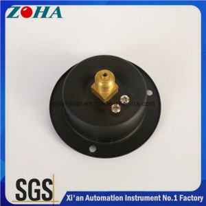 Economical General Pressure Meter Hot Selling for Import and Export with Flange pictures & photos