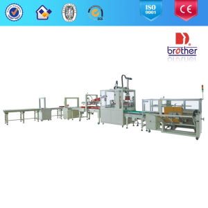 2015 Brother Apl-CS10 Automatic Carton Packing Line pictures & photos