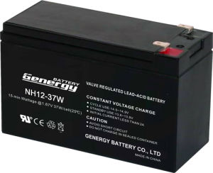 12V 9ah High Rate AGM Battery for UPS (NH12-37W)