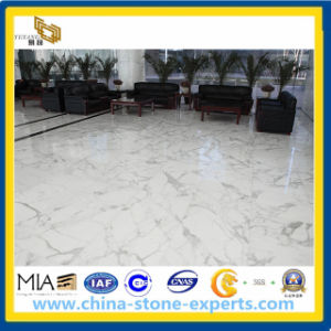 Guangxi White Marble Flooring Tile, Wall Tile (YQA-MT1004) pictures & photos