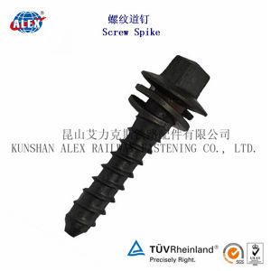 Ss35 Screw Spike, Ss5 Sleeper Screw, Ss8 Concrete Screw pictures & photos