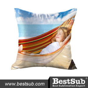 Pillow Cover (Satin, 40*40cm) (BZ4040) pictures & photos