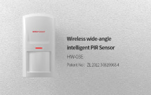 OEM/ODM Smart Wireless PIR Mini Infrared Detector (HW-03E) pictures & photos