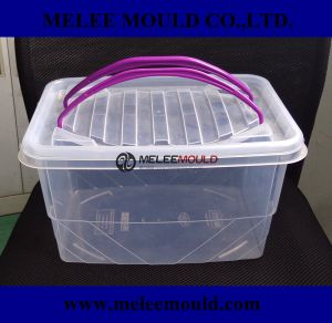 High Quality Clear Portable Storage Container Moulding pictures & photos