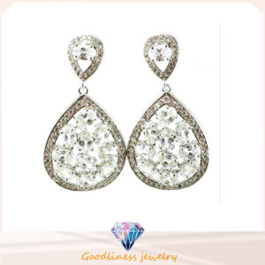 Fashion 925 Sliver Earring with Shine Stones Jewelry (Se3214W) pictures & photos
