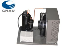 Highly Air-Cold Condensing Unit, Refrigeration Unit for Cold Room pictures & photos