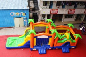 Inflatable Double Bounce House with Water Slide Chb619 pictures & photos